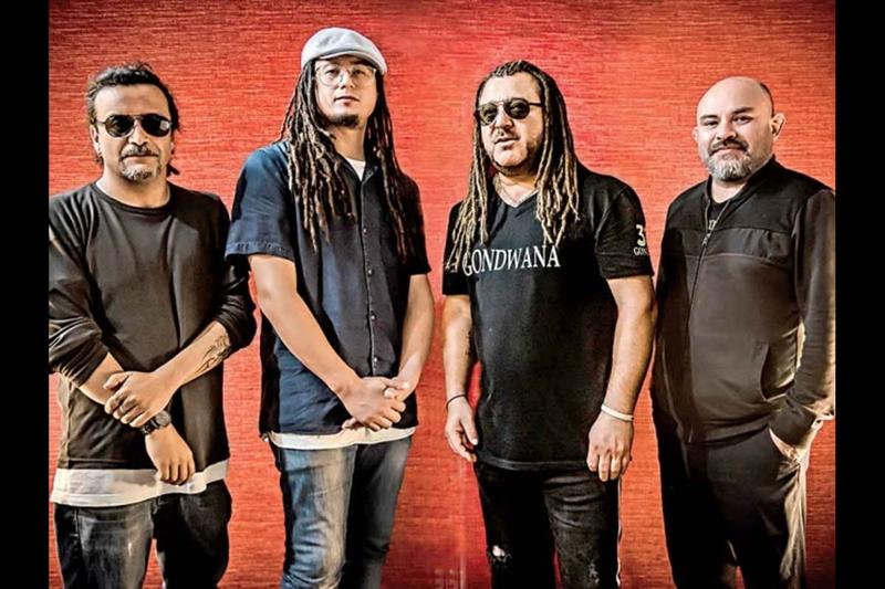 GONDWANA Lions Tour 2020